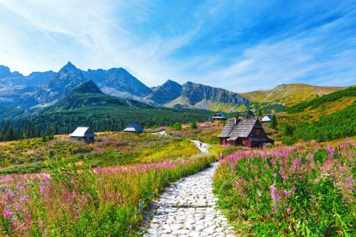 Dolina Gąsienicowa w Tatrach