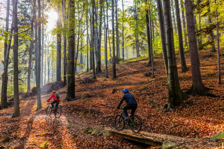 Dwójka rowerzystów jedzie przez jesienny las